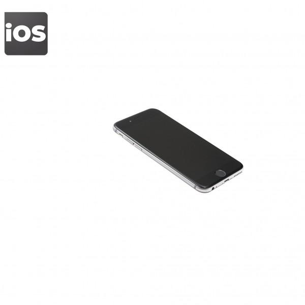 Apple iPhone 6   16GB   Space Grau   Gebraucht